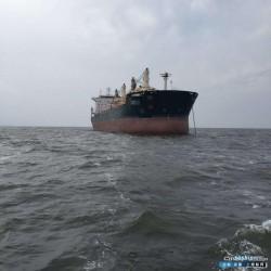 最新5000吨散货船转让 转让53400吨散货船