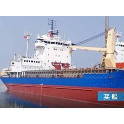 399975 出售3999吨杂货船