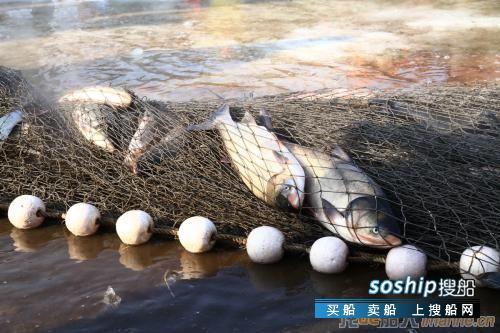 俄安全局:80余名朝鲜公民因非法捕捞被