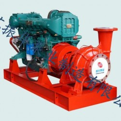 柴油机应急消防泵 CWY型