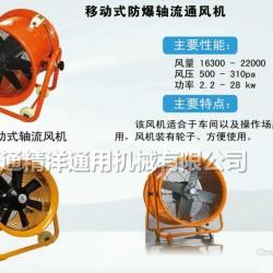 南通精洋110V/220V手提防爆轴流通风机