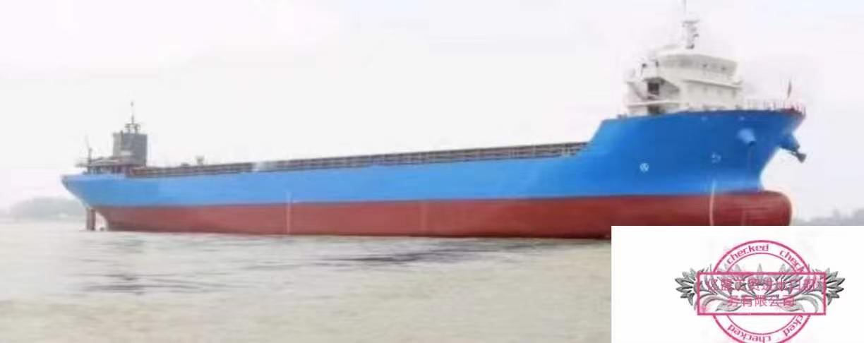 集装箱船10000吨